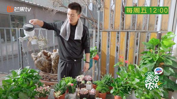 《哈哈农夫》贾乃亮:在大自然中治愈困扰享受孤独