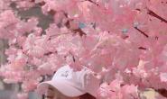 神仙颜值!宣璐樱花照头戴棒∏球帽气质淡雅清新